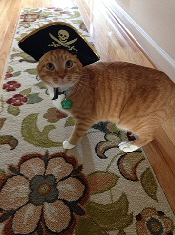 Argh-Jack-Sparrow