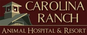 Carolina-Ranch-Animal-Hospital