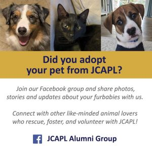JCAPL Facebook Alumni group