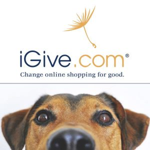 igive.com online shopping donation